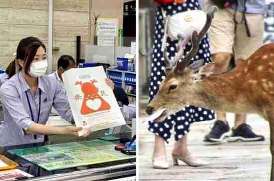 japan nara paper bag deers