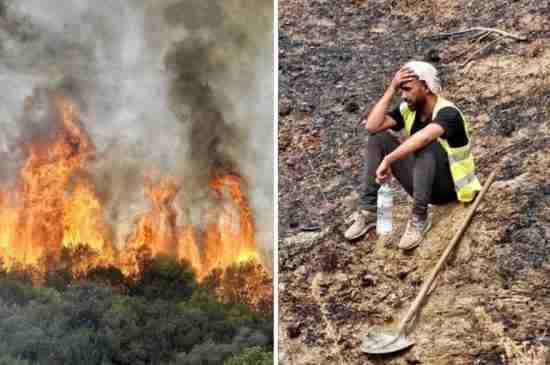 algeria wildfires soldiers