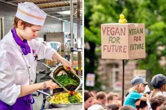berlin universities vegan climate change